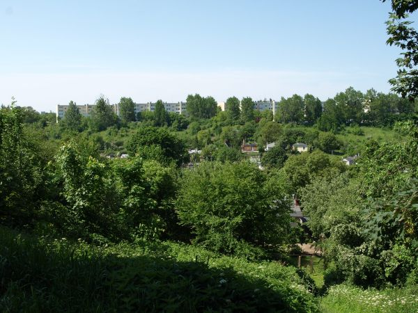 Przeglądasz fotografie z witryny kolonia.gda.pl Na Kolonii
