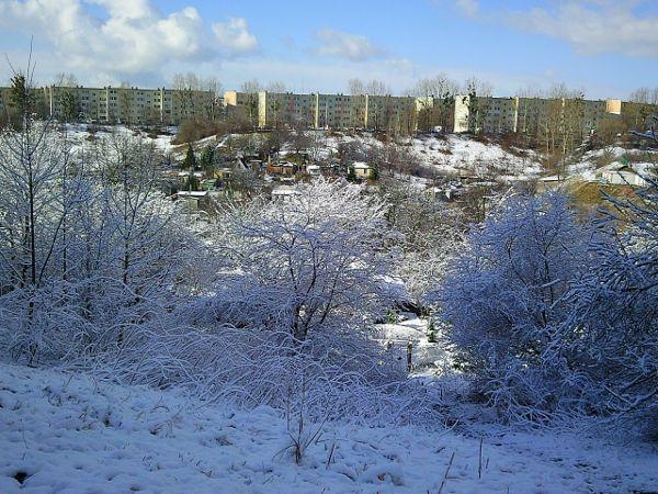 Przeglądasz fotografie z witryny kolonia.gda.pl Zimowe widoki